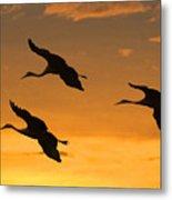 Sandhill Cranes At Dusk Metal Print by Larry Linton