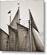 Schooner Pride Tall Ship Charleston Sc Metal Print by Dustin K Ryan