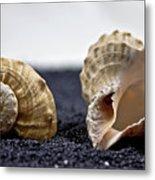 Seashells On Black Sand Metal Print by Joana Kruse