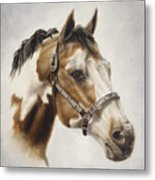 Show Off Metal Print by Cathy Cleveland