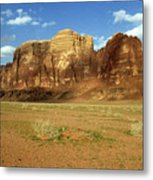 Sparse Tussock And Rock Formations In The Wadi Rum Desert Metal Print by Sami Sarkis