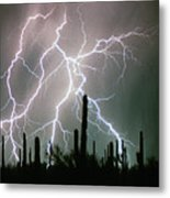 Striking Photography Metal Print by James BO  Insogna