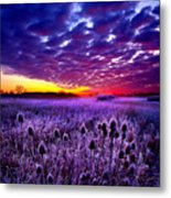 The Audience Metal Print by Phil Koch