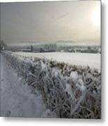 Frozen Britain Metal Print by Angel  Tarantella