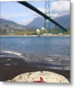 Starfish Stanley Park Vancouver Metal Print by Pierre Leclerc Photography