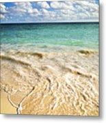 Tropical Beach  Metal Print by Elena Elisseeva