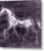 Horse Metal Print by Julie Niemela