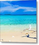 Tropical Beach Malcapuya Metal Print by MotHaiBaPhoto Prints