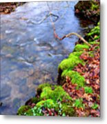 Middle Fork Of Williams River Metal Print by Thomas R Fletcher