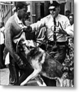 A Black Man Is Attacked By A Policeman Metal Print by Everett