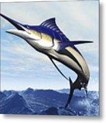 A Sleek Blue Marlin Bursts Metal Print by Corey Ford