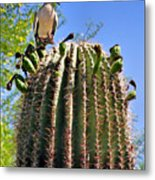 A Spiky Home Metal Print by Christine Till