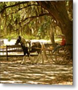 A Stroll In The Park Metal Print by Adele Moscaritolo