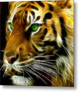 A Tiger's Stare Metal Print by Ricky Barnard