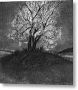 Advice From A Tree Metal Print by J Ferwerda