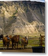 After The Ride Metal Print by Patrick  Flynn