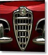 Alfa Red Metal Print by Douglas Pittman