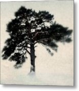 All In White Metal Print by Julie Hamilton
