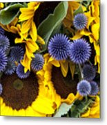Allium And Sunflowers Metal Print by Jane Rix