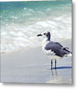Alone On The Beach Metal Print by Thomas R Fletcher
