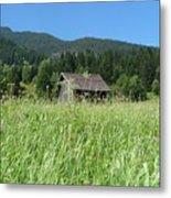 Alpine Meadow  Metal Print by Carol Groenen