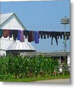 Amish Laundry Metal Print by Lori Seaman