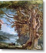 An Ancient Beech Tree Metal Print by Paul Sandby