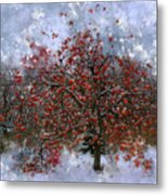 An Apple Of A Day Metal Print by Julie Lueders