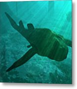 An Armored Bothriolepis Glides Metal Print by Walter Myers