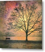 And The Morning Is Perfect In All Her Measured Wrinkles Metal Print by Tara Turner