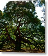 Angel Oak Tree 2004 Metal Print by Louis Dallara