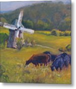 Angus On The Ridge Metal Print by B Rossitto