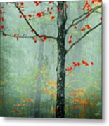 Another Day Another Fairytale Metal Print by Katya Horner