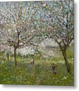 Apple Trees In Flower Metal Print by Ernest Quost