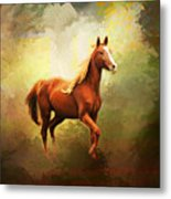 Arabian Horse Metal Print by Jai Johnson