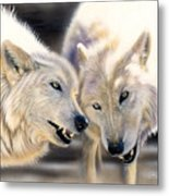 Arctic Pair Metal Print by Sandi Baker