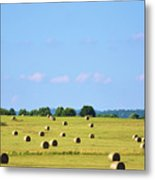 As Far As You Can See Metal Print by Jan Amiss Photography