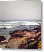 Asilomar Beach Pacific Grove Ca Usa Metal Print by Joyce Dickens
