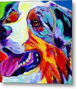 Aussie Metal Print by Alicia VanNoy Call