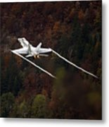 Autumn Metal Print by Angel  Tarantella