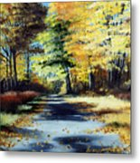 Autumn Colors Metal Print by Paul Walsh