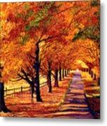 Autumn In Vermont Metal Print by David Lloyd Glover
