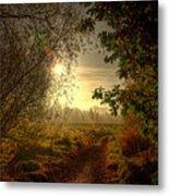 Autumn Mist Metal Print by Kim Shatwell-Irishphotographer