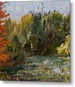 Autumn  Pond Metal Print by Nancy Albrecht