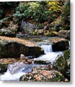 Autumn Rushing Mountain Stream Metal Print by Thomas R Fletcher