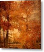 Autumn Tapestry - Lake Carasaljo Metal Print by Angie Tirado