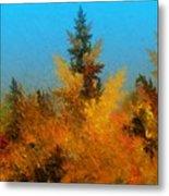 Autumnal Forest Metal Print by David Lane