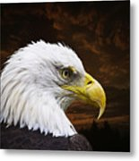 Bald Eagle - Freedom And Hope - Artist Cris Hayes Metal Print by Cris Hayes