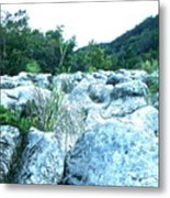 Barton Creek Dried Up Metal Print by Chuck Taylor