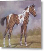 Bay Paint Foal Metal Print by Dorothy Coatsworth
